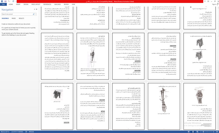 تحقیق عضلات بدن